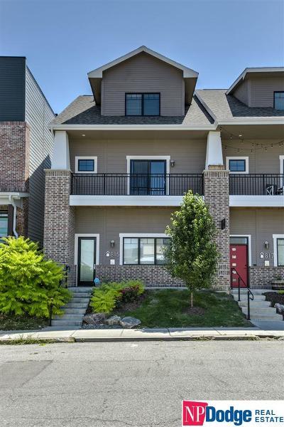 Omaha Single Family Home New: 815 S 31 Street