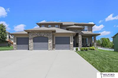 Omaha Single Family Home New: 3701 S 201 Avenue