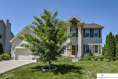 Omaha Single Family Home New: 5020 N 141st Street