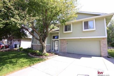 Omaha Single Family Home New: 14533 Karen Street