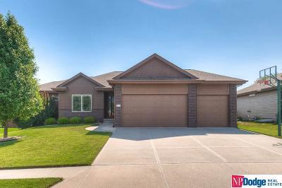 Omaha NE Single Family Home New: $380,000