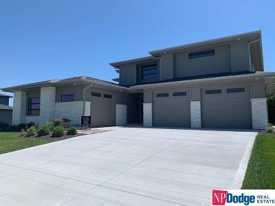 Omaha NE Single Family Home New: $656,800