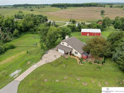 Cass County Single Family Home For Sale: 18302 Nicholas Road