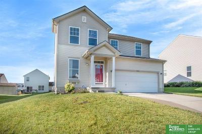 Omaha Single Family Home New: 10664 Potter Street