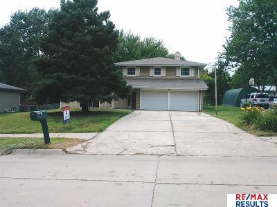 Omaha Single Family Home New: 3710 S 117th Street