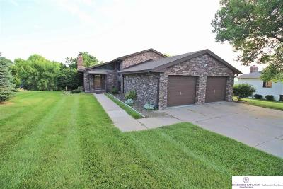 Single Family Home For Sale: 3070 Westridge Drive
