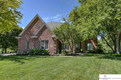 Omaha Single Family Home For Sale: 18407 William Circle