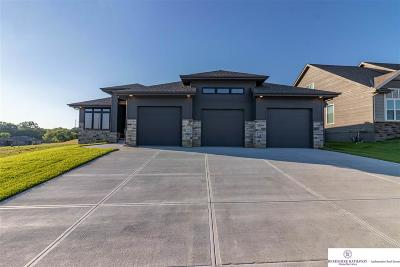 Bellevue Single Family Home For Sale: 2108 Gindy Drive
