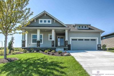 Single Family Home New: 11008 S 186 Avenue