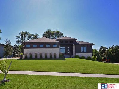 Lincoln NE Single Family Home New: $569,000