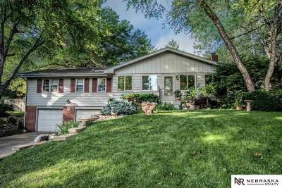 Omaha Single Family Home New: 9132 Dorcas Street