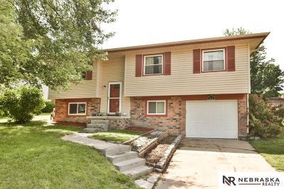 Sarpy County Single Family Home New: 3203 Mirror Circle