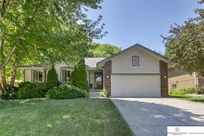 Omaha NE Single Family Home New: $220,000