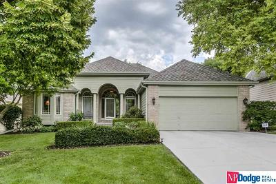 Omaha NE Single Family Home New: $425,000