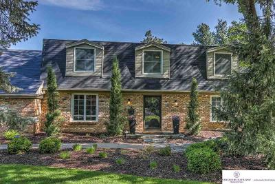 Omaha NE Single Family Home New: $699,999
