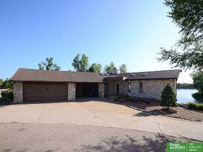 Sarpy County Single Family Home New: 12902 Lake View Drive