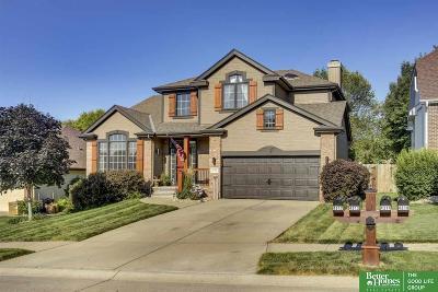 Omaha NE Single Family Home New: $270,000