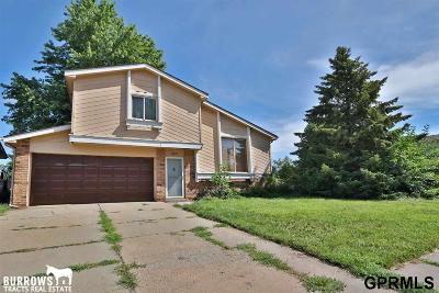 Single Family Home New: 12802 Josephine Street
