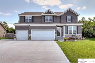 Bellevue Single Family Home For Sale: 1905 Oriole Drive