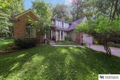 Bellevue Single Family Home For Sale: 11755 Anderson Grove