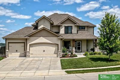 Papillion Single Family Home For Sale: 9815 S 68th Street