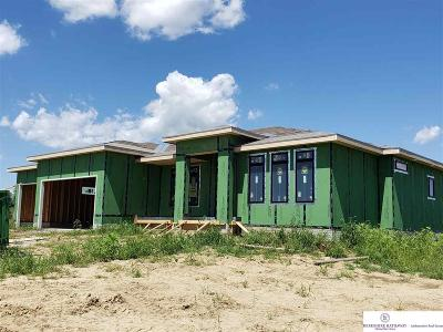 Elkhorn Single Family Home For Sale: 4203 S 218 Avenue