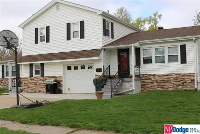 Blair Multi Family Home For Sale: 411 N 13 Street