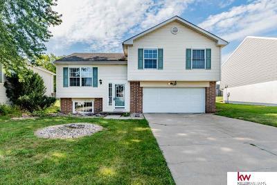 Bellevue Single Family Home For Sale: 3101 Blackhawk Drive