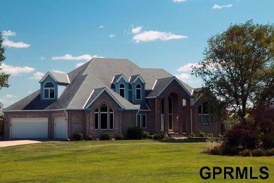 Papillion NE Single Family Home For Sale: $1,359,000
