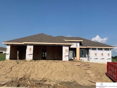 Elkhorn Single Family Home For Sale: 4206 S 219 Street