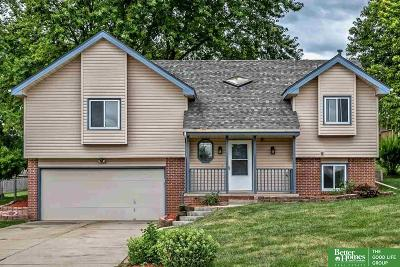 Bellevue Single Family Home For Sale: 9906 S 9th Circle
