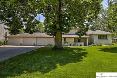 Elkhorn Single Family Home For Sale: 711 S 217 Street