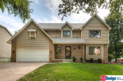 Papillion Single Family Home For Sale: 807 Valentine Lane