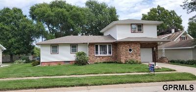 Plattsmouth Single Family Home For Sale: 2205 Andies Street