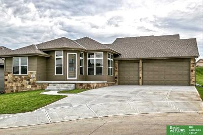 Bellevue Single Family Home For Sale: 2010 Geri Circle