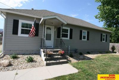 Single Family Home For Sale: 219 Prospect Avenue