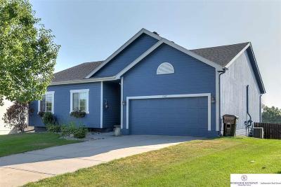 Papillion Single Family Home For Sale: 1507 Ridgeview Drive