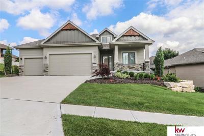 La Vista Single Family Home For Sale: 10019 Emiline Street