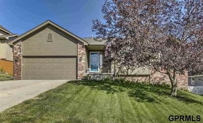 Single Family Home For Sale: 12105 N 159 Street