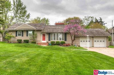Omaha Single Family Home For Sale: 9429 Chicago Street