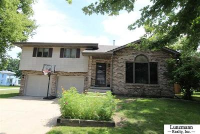 Auburn Single Family Home For Sale: 1305 N Street