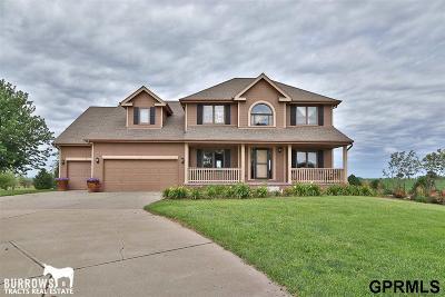 Single Family Home For Sale: 2396 Heartland Drive