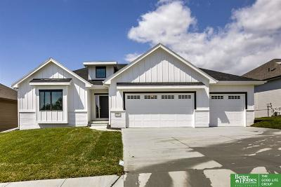 Single Family Home For Sale: 11020 S 175th Avenue