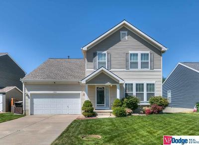 Omaha Single Family Home For Sale: 3902 S 191 Avenue