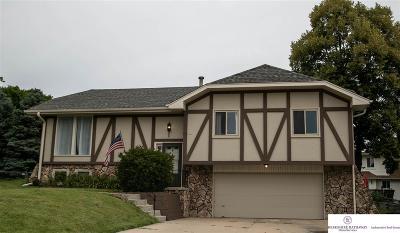 Single Family Home New: 15216 Dorcas Circle