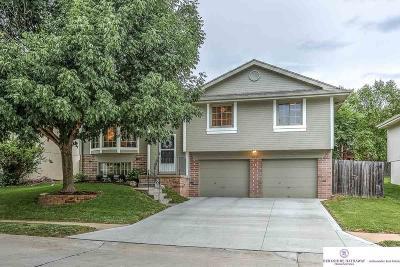 Single Family Home New: 6917 S 154 Street