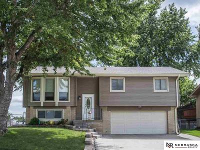 Single Family Home New: 13559 Lillian Street