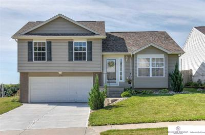 Omaha NE Single Family Home New: $189,000