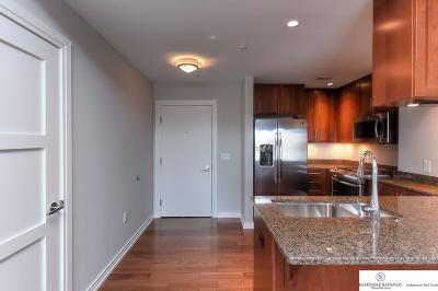 Omaha Single Family Home New: 120 S 31 Avenue #5209