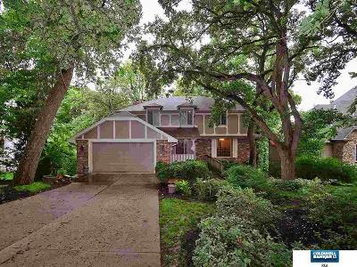 Elkhorn Single Family Home For Sale: 1008 Skyline Drive